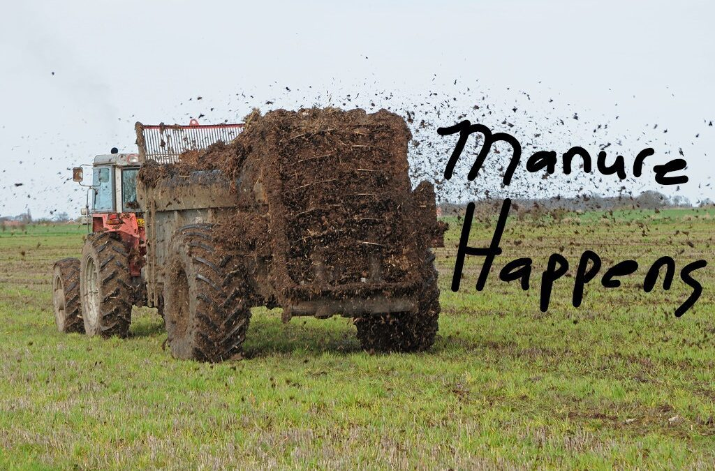 Truck spreading manure in a field