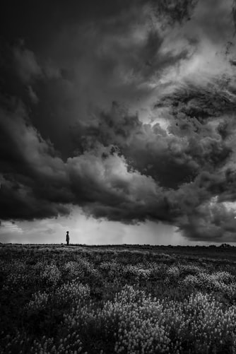 Gray clouds hovering over a field
